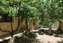 Купить дом в деревне Пера Педи Кипр Троодос