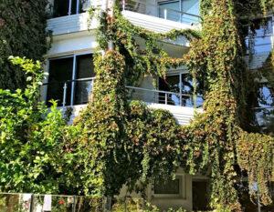 продажа люкс апартаментов у моря комплекс The Ermitage